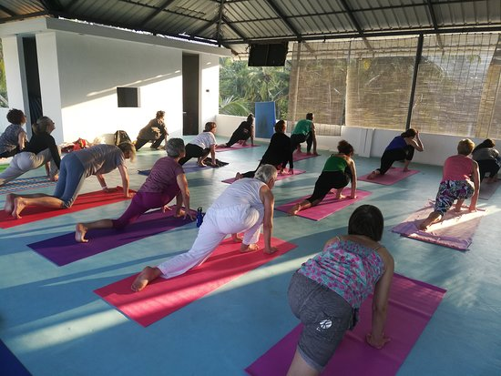 Elephant Yoga Centre