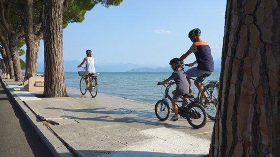 Mincio in Bike