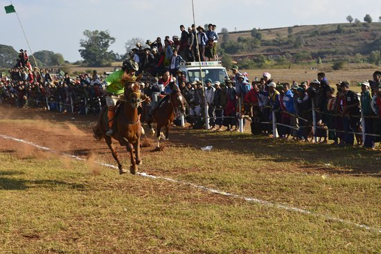 Polestar Travel: horse riding in shan  state!