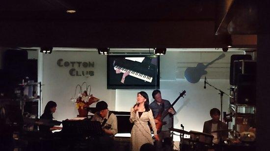 COTTON CLUB Live Jazz Bar: 毎日演奏があり心地よいボーカルとピアノ、ギターの音色に癒されました!女性、ひとりでも楽しめるお店。