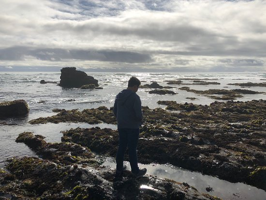 Davenport, CA: Beautiful stop for a quick walk down to the beach. Tide pools and beautiful vistas