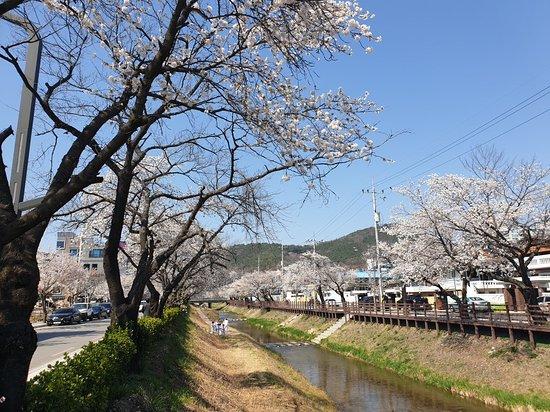 Mojeoncheon