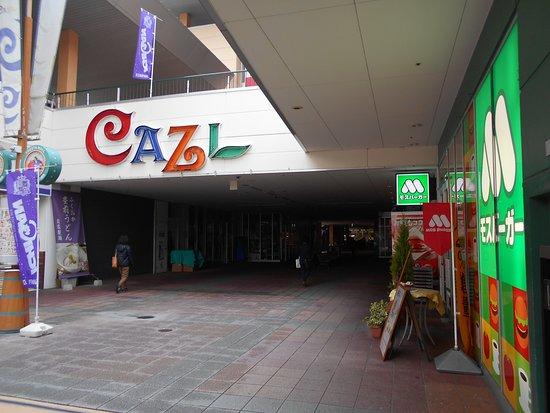 Cazl Yokogawa