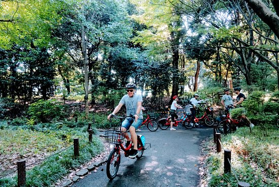 Cycling Holiday Tokyo