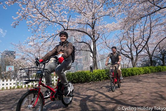http://cyclingholiday.tokyo