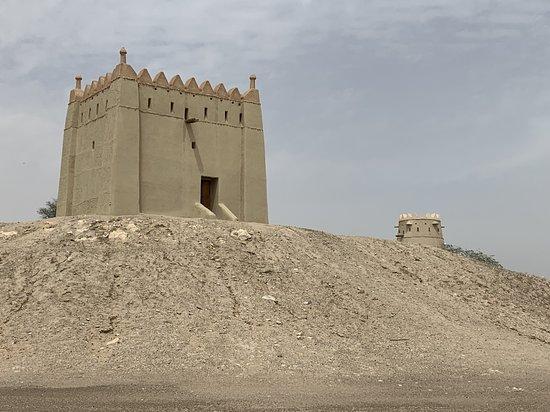 Al Hili Towers