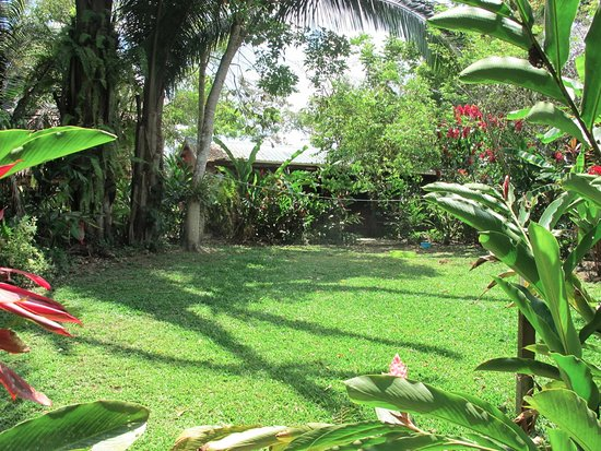 San Antonio, Belize: The lawn outside the reception area.