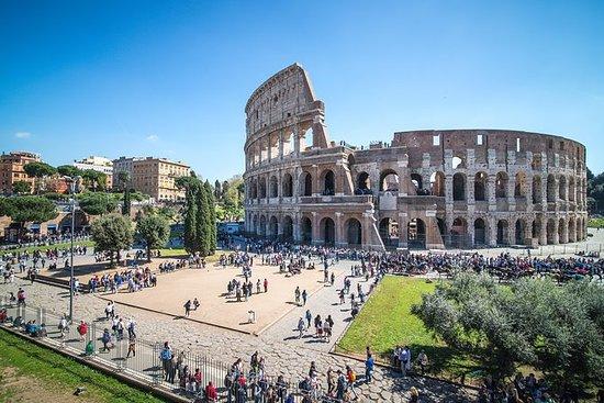 快速通道:古羅馬半日徒步之旅,競技場入口