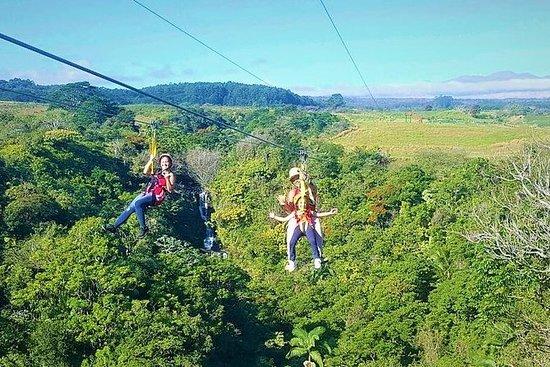 Big Island Zipline Adventure - 2 1/2...