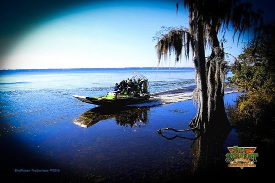St Johns River Airboat Safari