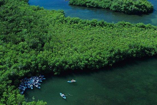 Cas Cay - Kayak Hike and Snorkel