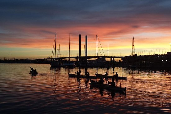 2,5-timers Melbourne Sunset Kayak Tour