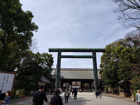 桜が開花した直後の靖国神社