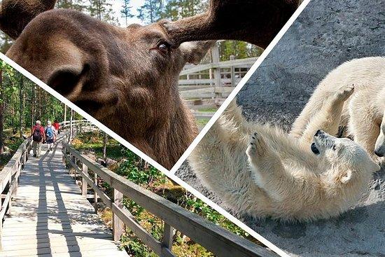 引导Ranua野生动物园之旅,小团体冒险,午餐包括在内