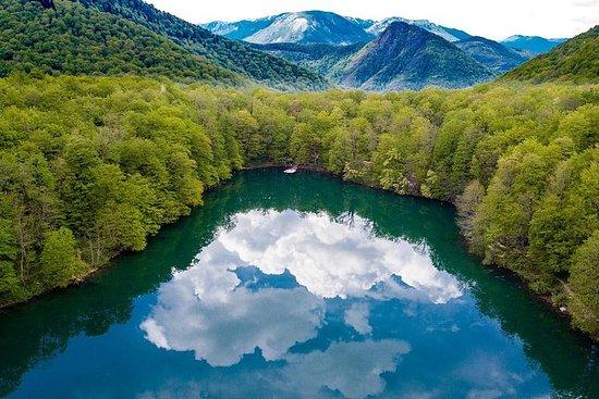 我的导游之旅 - 维珍森林 -  Biogradska...