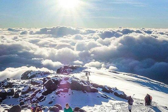 Summit Africa (Mt Kilimanjaro) 7days...