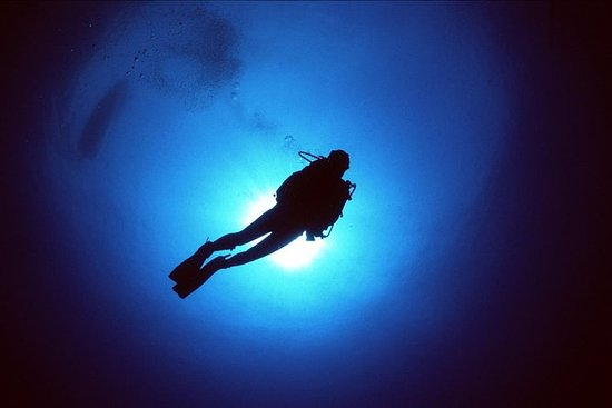 Discover Scuba Diving Portofino & Christ of the Abyss: Discover Scuba Diving Tours in Portofino & Christ of the Abyss