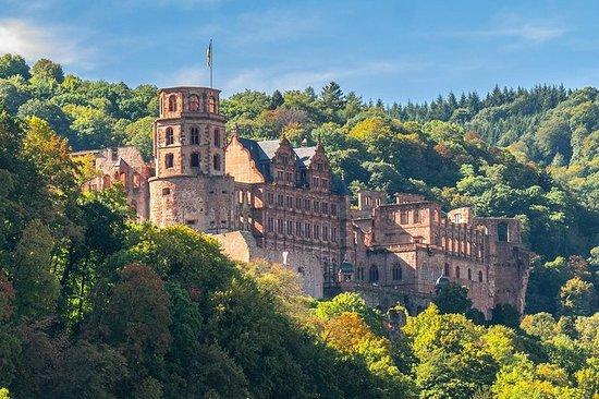 Heidelberg tur med en profesjonell...