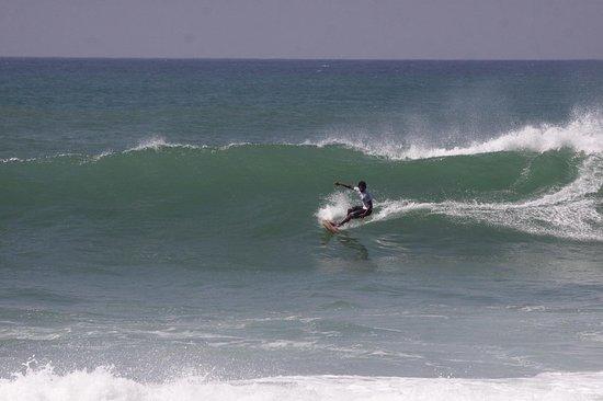 Bay Tour Surf School: 😍😍