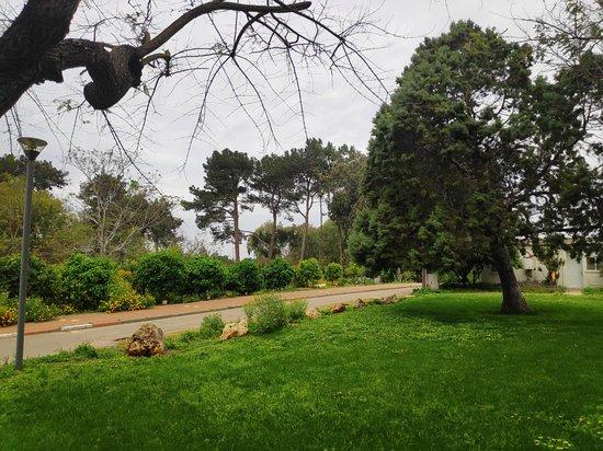 Givat Haim, Izrael: בישבילי הקיבוץ