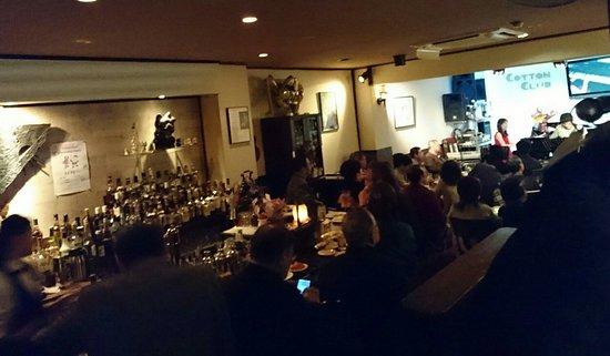 COTTON CLUB Live Jazz Bar: PUB&JAZZ COTTON CLUB