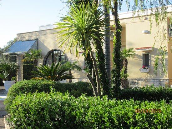 Tropical Hotel: Foto Frontale Esterno.