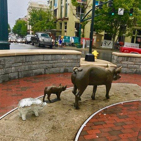 Luella's Bar-B-Que: Disco Pig Visits Downtown Asheville