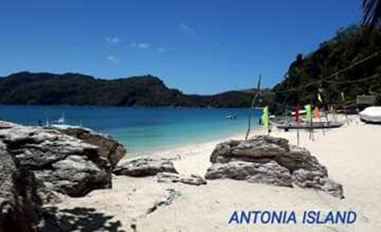 Antonia Beach Carles 2020 All You