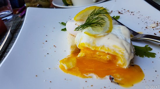 Poached Egg for Breakfast