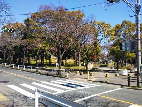 Jingu Higashi Park