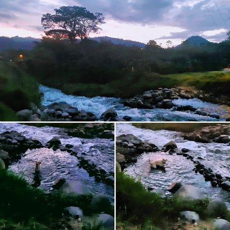 PARADISE is very near, it's in MINDO. El  PARAISO está muy cerca, está en MINDO. Visit Ecuador, the most bio diverse country & the most underrated country.