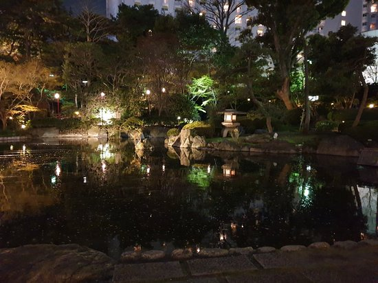 Lovely Japanese garden even at night
