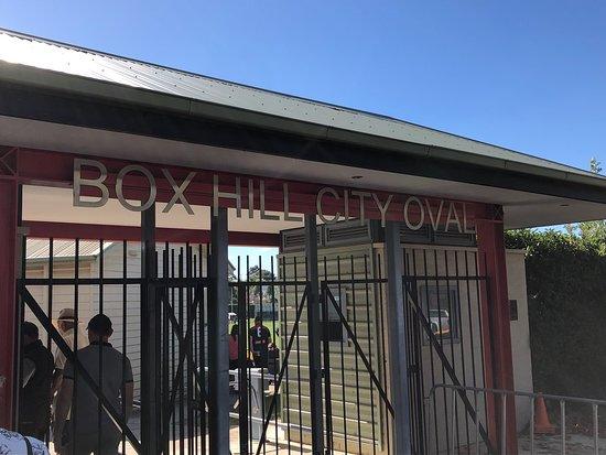 Box Hill City Oval