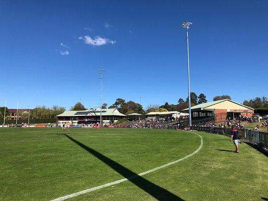 Box Hill City Oval