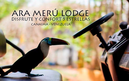 Caracas Tours: Accommodation Angel Falls