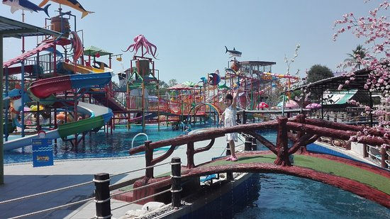 Splash Fun Water Park