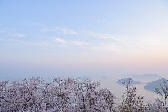 Mt. Shiude: 瀬戸の島々