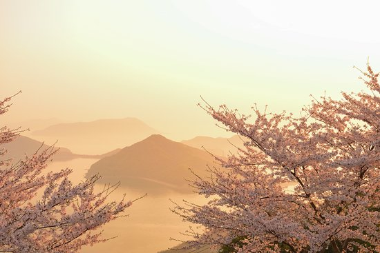Mt. Shiude: たくさんの人出にびっくりしました