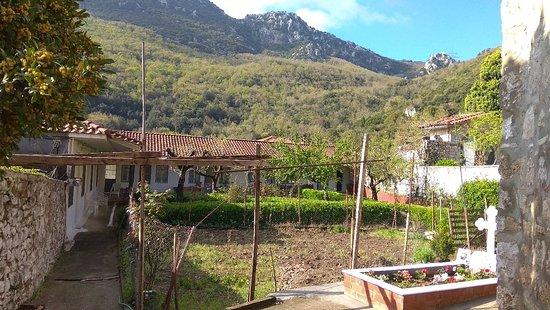 Ipsilantis, יוון: Μονή Άγιος Νικόλαος Υψηλάντης Αλιαρτου