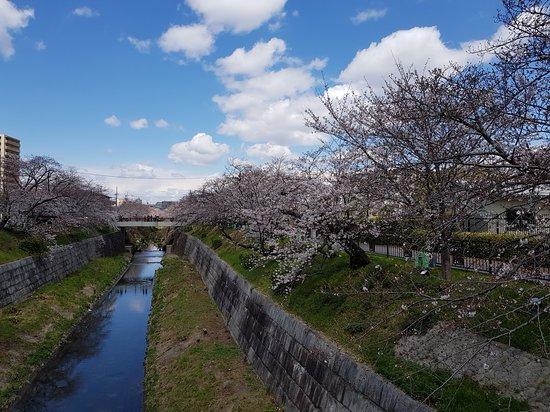 Sungai Yamazaki