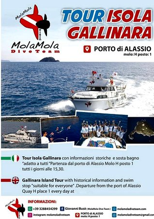 Isola Gallinara Tour e whale watching