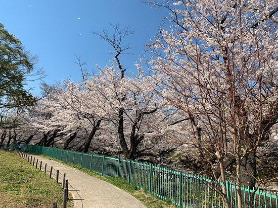 Kaga Maeda House Shimoyashiki Site