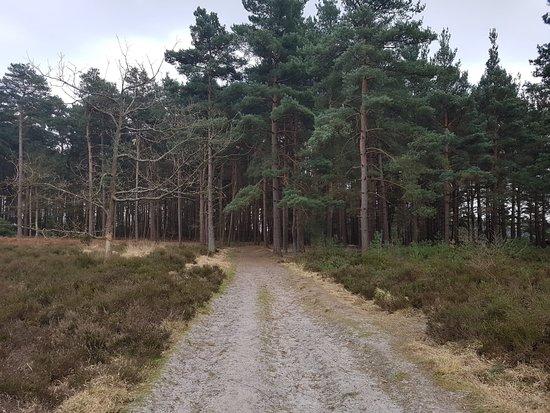 Long enjoyable walk