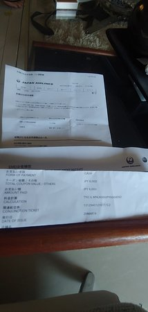 Japan Airlines (JAL): from holding our pass at the counter