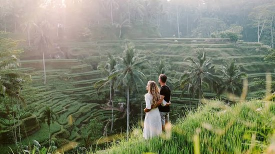 Ubud Yoga Bali Tours