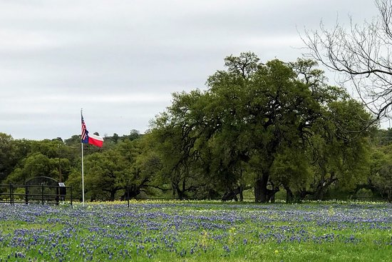 What a wonderful early April experience! Don't miss the opportunity to take the Willow City Loop during Bluebonnet season...it is absolutely gorgeous!