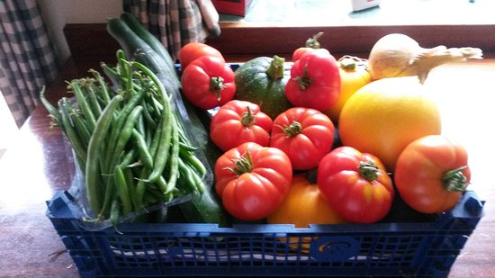 We cook all our meals from scratch using the vegetables and fruit grown on our farm.