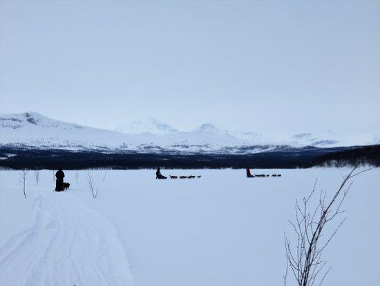 Mushing on the lake