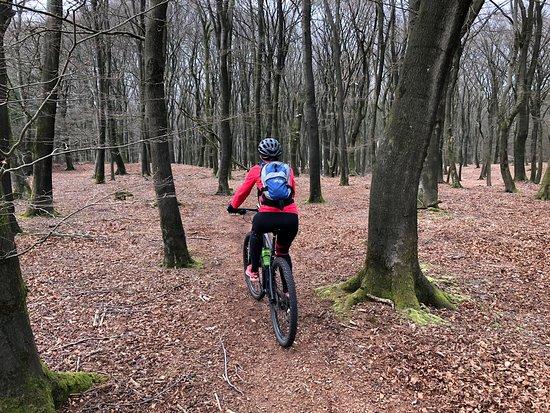 Mountainbikenopdeveluwe.nl Εικόνα