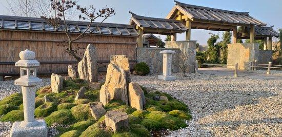 Ogrody Kapias: China garden